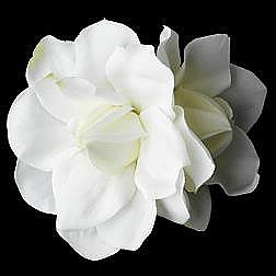Elegance by Carbonneau Flower Hair Clip-410-Diamond-White