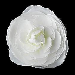 Elegance by Carbonneau Flower Hair Clip-406-Diamond-White