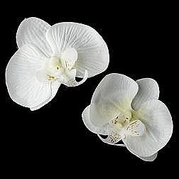 Elegance by Carbonneau Flower Hair Clip-405-White